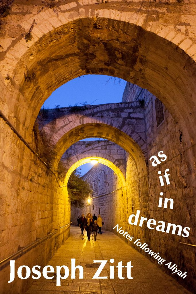"""Cover of book """"as if in dreams: Notes following Aliyah"""""""